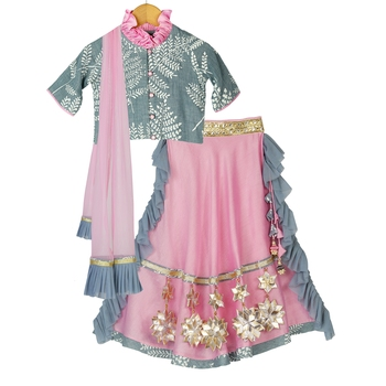 Grey & Pink Chanderi Lehenga with Printed Top