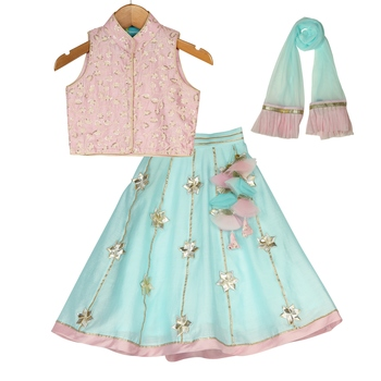 Pink & Light Blue Chanderi Silk Lehenga with thread sequins embroidered Top