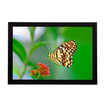 Flower & Butterfly Satin Matt Texture UV Art Painting