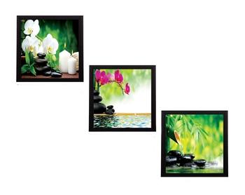 Set Of 3 Flora and Stones Satin Matt Texture UV Art Painting