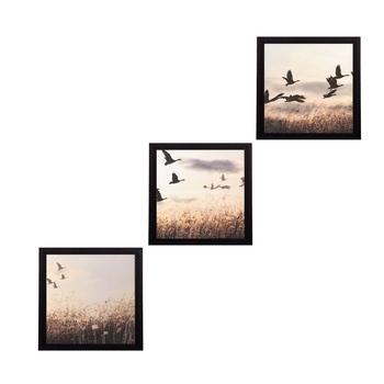 Set Of 3 Flying Birds Scenary Satin Matt Texture UV Art Painting