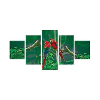 Set of 5 Parrots Pair Premium Canvas Painting