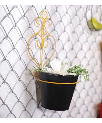 Color Palatte Hanging Wall Planter