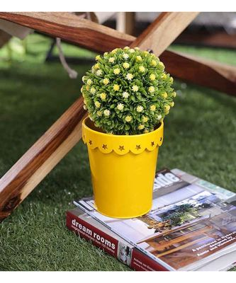 Color Palatte Yellow Star Planter