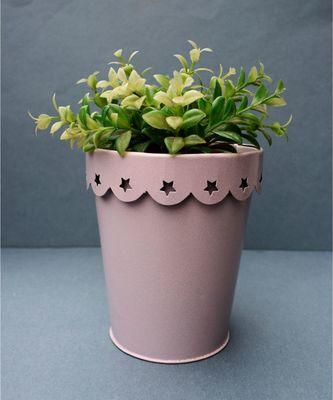 Color Palatte Pale Pink Heart Planter