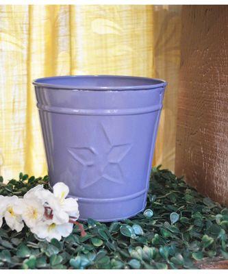 Color Palatte Blue Star Planter