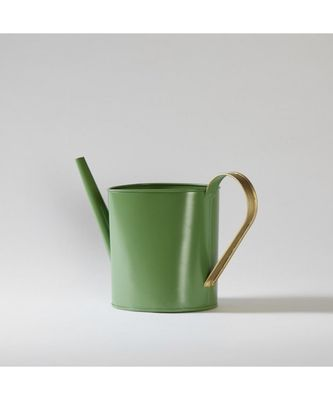 Green Metal Watering Can With Gold Handle