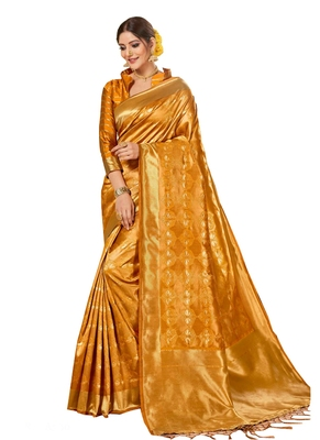 Brown brasso kanchipuram silk saree with blouse
