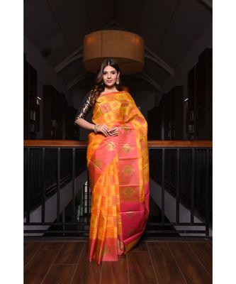 Multicolour Banarasi Organza Handwoven saree with blouse