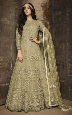 Pale green   embroidered net salwar