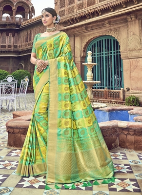 light green woven patola saree with blouse