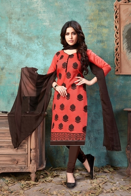 Coral embroidered chanderi salwar