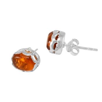 Multicolor amber earrings