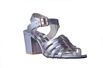 Women Synthetic Silver block Heels