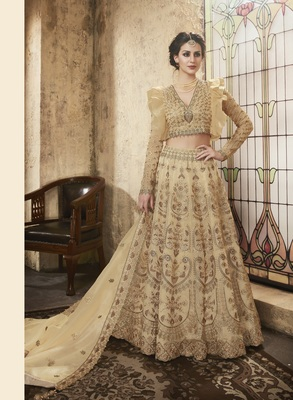 Beige embroidered net semi stitched salwar with dupatta