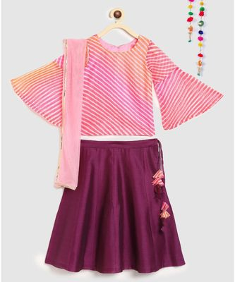 purple striped kota doria full sleeves choli with contrast chanderi lehnga