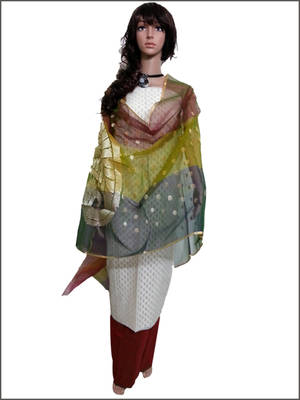 Beautiful Salwar suit with Banarasi Dupatta