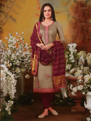 Chiku embroidered silk salwar