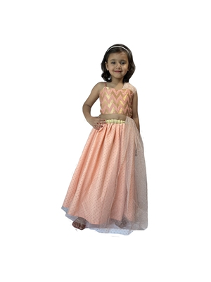 Anitabalia_Label Baby Girl's woven  crop top, dot net Lehenga choli Fully Stitched. Pink