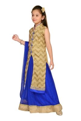 Blue woven silk stitched lehenga