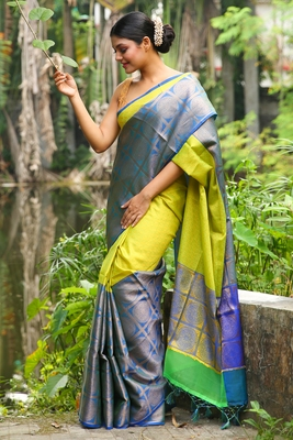 Lime woven brocade saree with blouse
