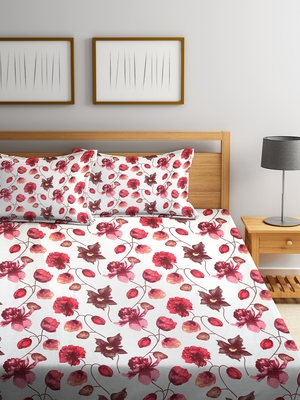 King Size 104 TC Cotton Double Bedsheet with 2 Pillow