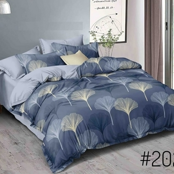 Noor Startup Glace Cotton 210 TC Handprinted King Size Bedsheet With 2 Pillow Cover