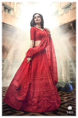 Red embroidered net Semi Stitched Bridal lehenga