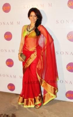 Vidya Malvade Net saree