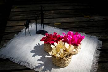 House Nature Flower Filled Baskets