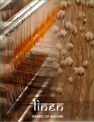 Roots of india1 44 min original